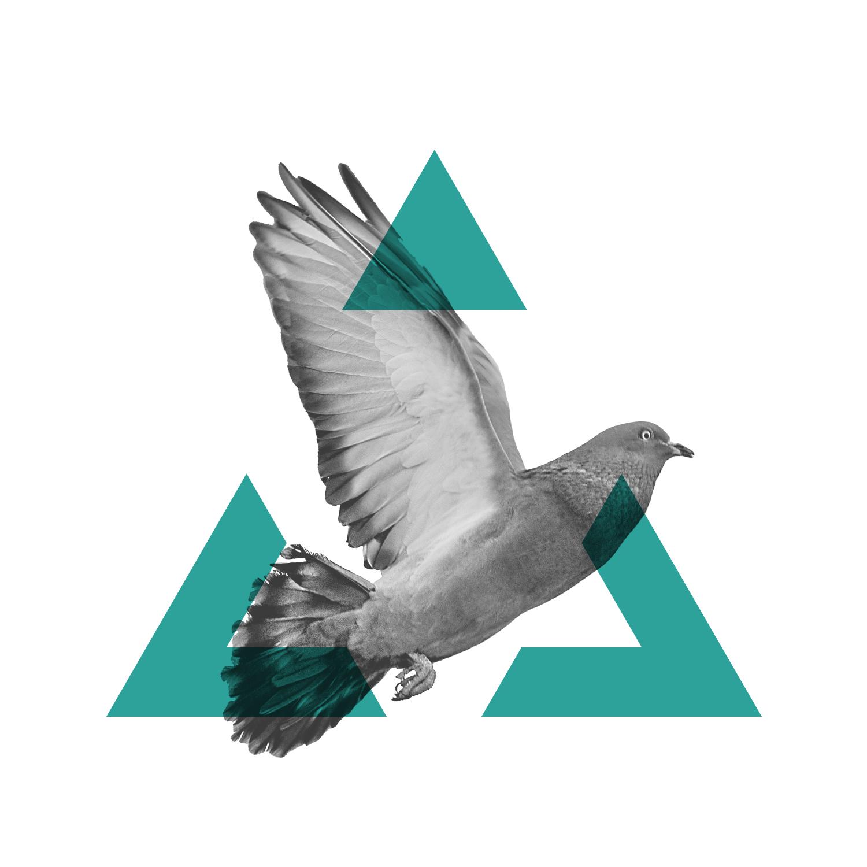 Symbol for Jeff Adelson-Yan